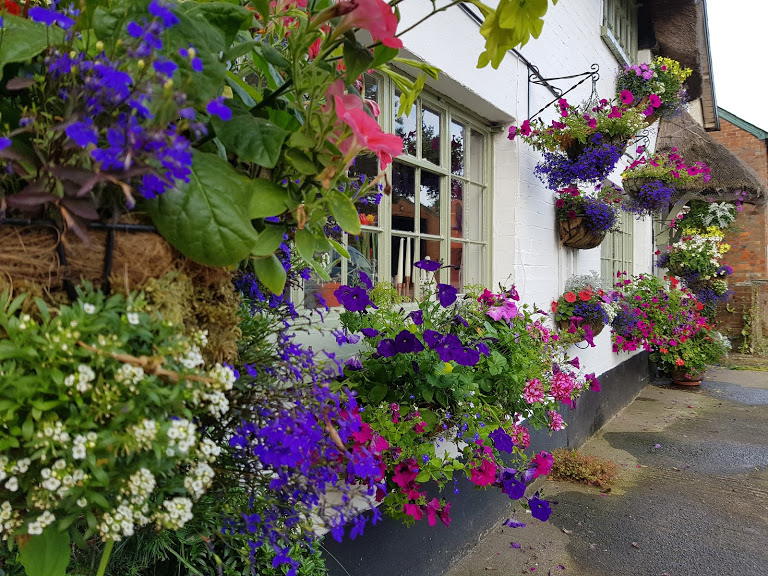 Colourful hanging baskets outside a cottage.