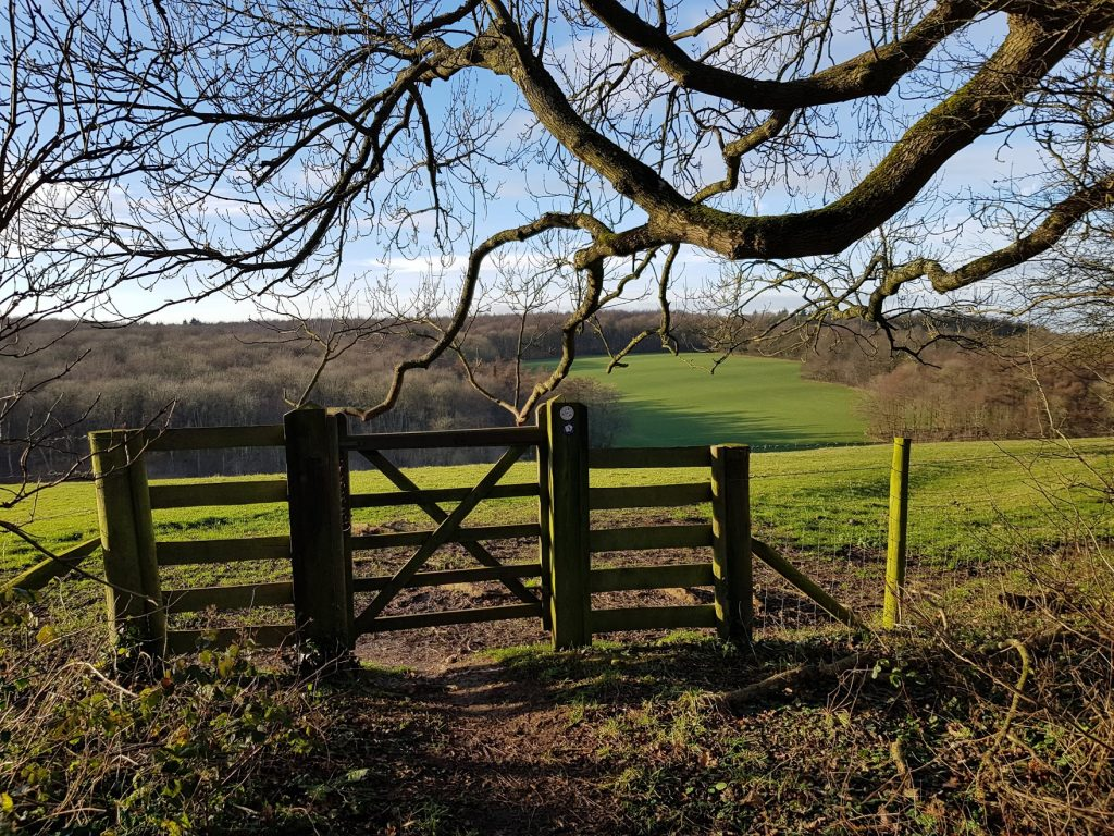 A gate on a footpath with views across fields to a wood.